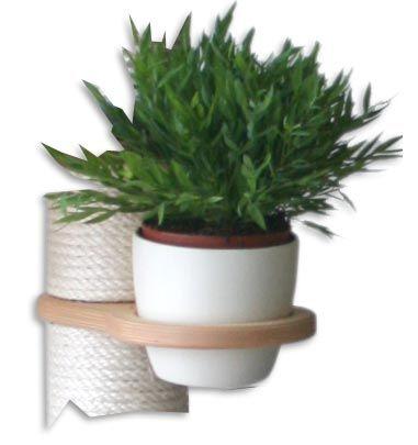 Z12 - Cat Grass Pot Holder